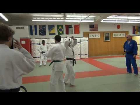 Detailed Look at Morote Seoi Nage