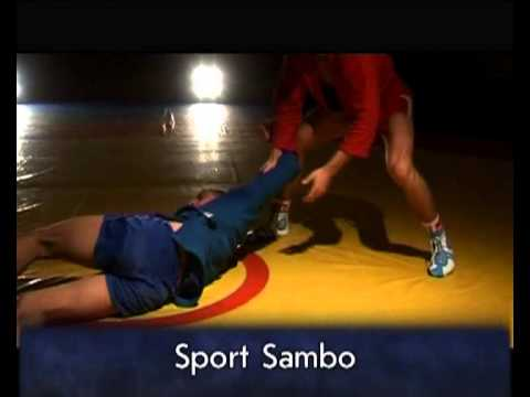 What is Sambo- An amazing Video