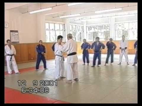 A great Japanese Judo Seminar