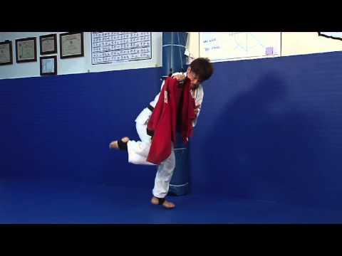 Judo Mate- A new Judo Product in Development?